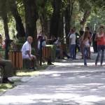 DOAR GRAI ROMÂNESC