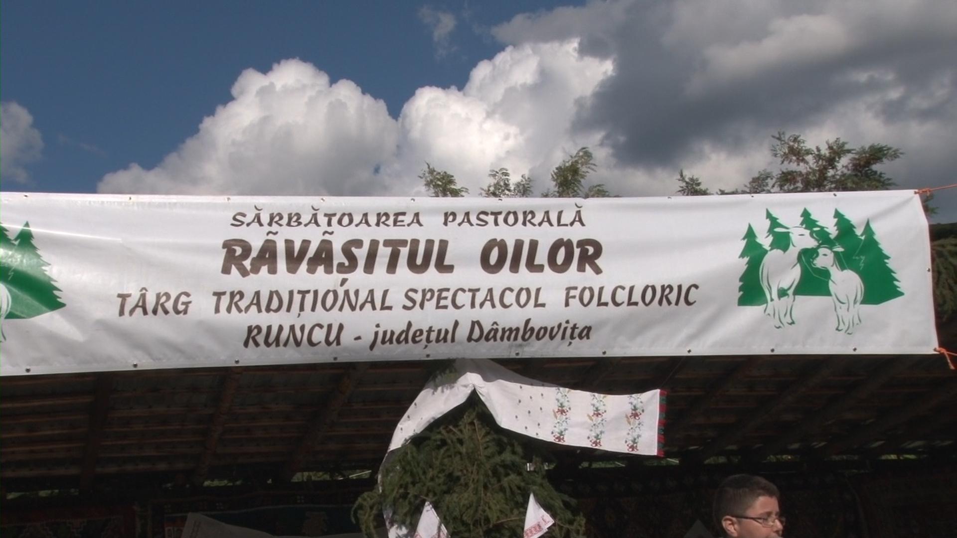 """""""Ravasitul oilor"""" din nou la Runcu – VIDEO"""