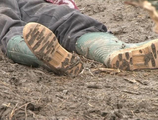 TRAGEDIE ÎN ARGEȘ! UN BĂRBAT CARE LUCRA LA O EXPLOATARE FORESTIERĂ A FOST ACCIDENTAT MORTAL DE UN COPAC ÎN CĂDERE