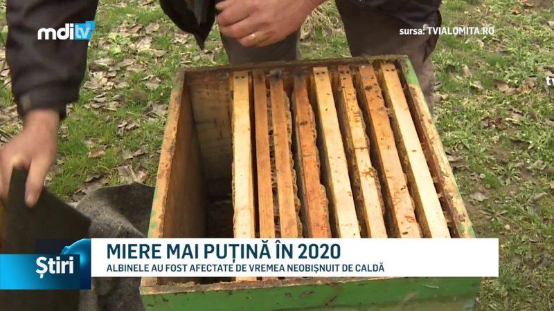 MIERE MAI PUȚINĂ ÎN 2020