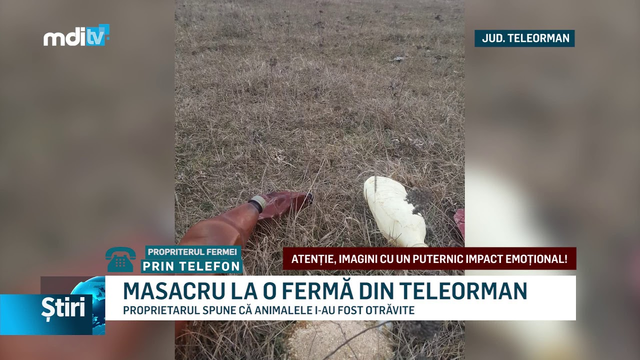 MASACRU LA O FERMĂ DIN TELEORMAN