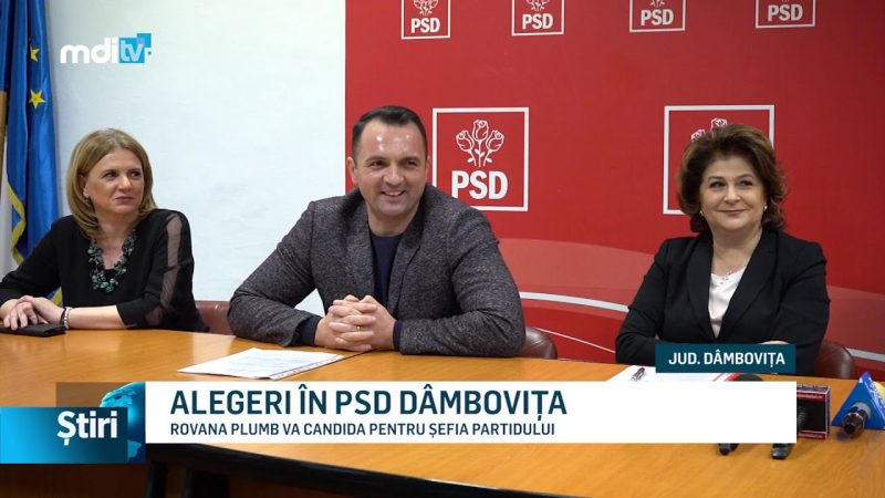 ALEGERI ÎN PSD DÂMBOVIȚA