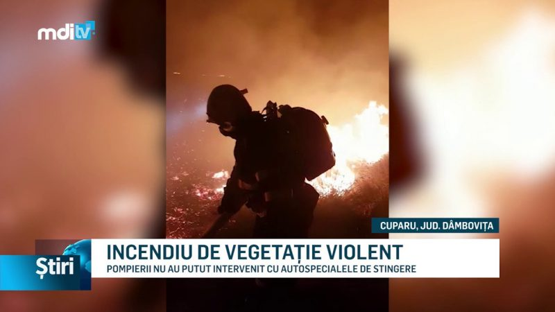INCENDIU DE VEGETAȚIE VIOLENT