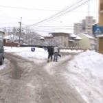 ZĂPADA, SURSĂ DE TRAI – VIDEO