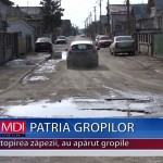 PATRIA GROPILOR – VIDEO