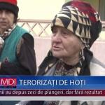 TERORIZAȚI DE HOȚI – VIDEO