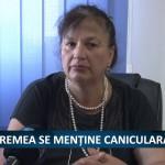 VREMEA SE MENTINE CANICULARA  – VIDEO