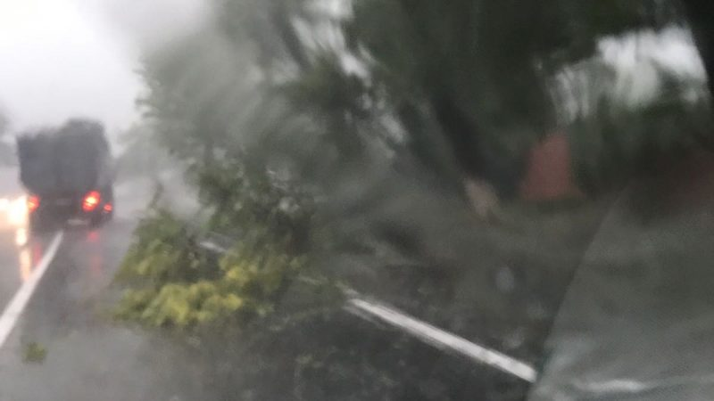 POTOP IN SUDUL JUDETULUI DAMBOVITA! VIDEO!
