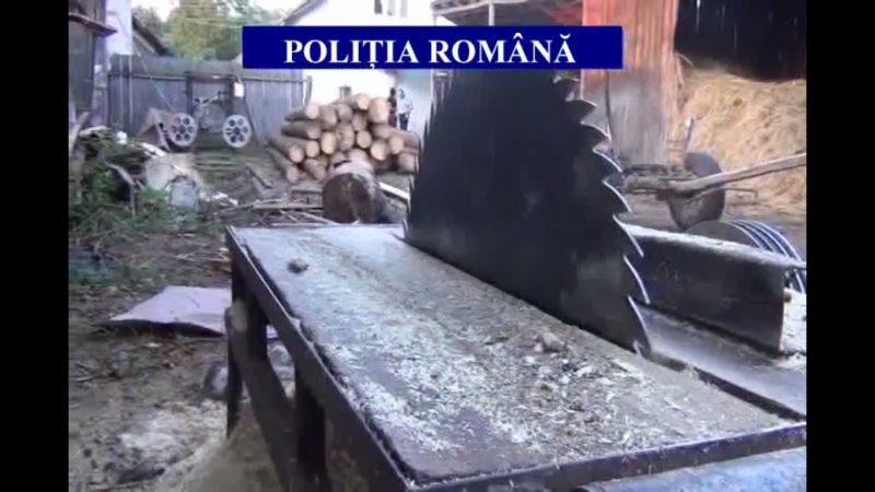 S-A TĂIAT ÎN PÂNZA UNUI GATER ÎN TIMP CE TĂIA LEMNE