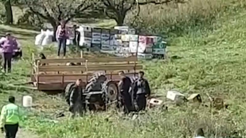 BĂRBAT STRIVIT DE TRACTOR