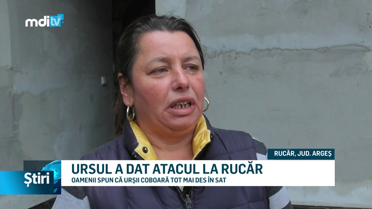 URSUL A DAT ATACUL LA RUCĂR