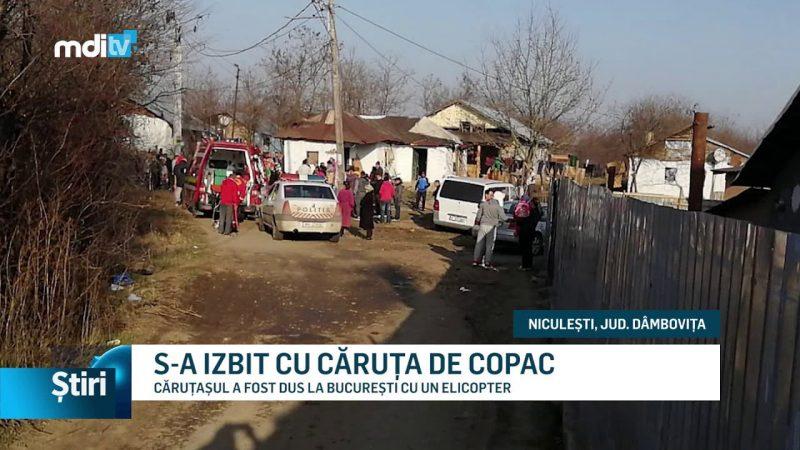 S-A IZBIT CU CĂRUȚA DE COPAC