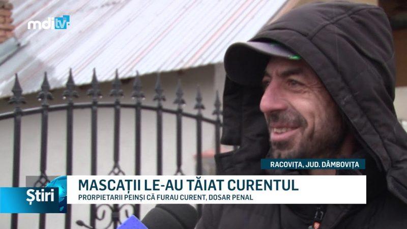 MASCAȚII LE-AU TĂIAT CURENTUL