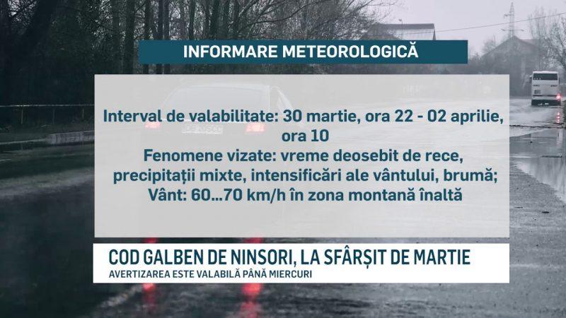 COD GALBEN DE NINSORI, LA SFÂRȘIT DE MARTIE