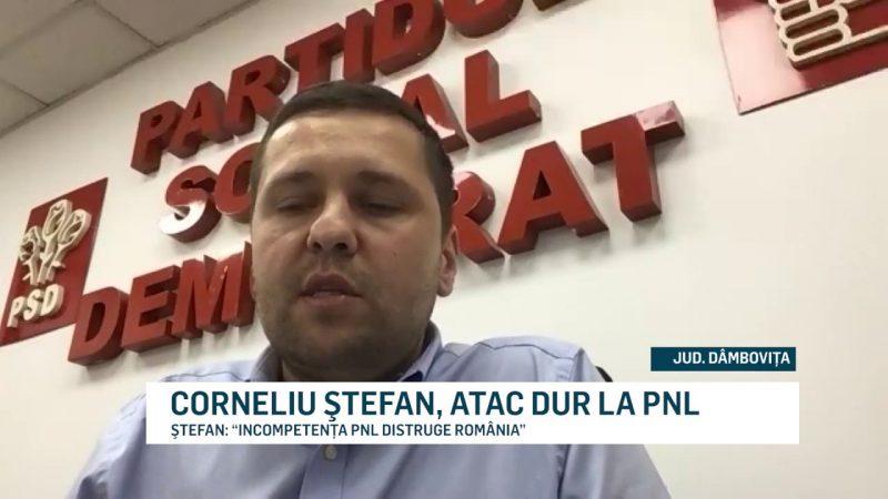 CORNELIU ŞTEFAN, ATAC DUR LA PNL