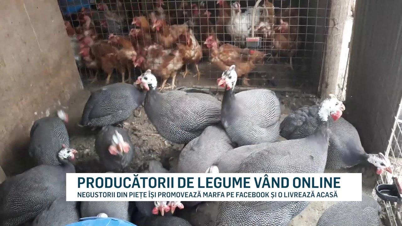 PRODUCĂTORII DE LEGUME VÂND ONLINE