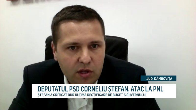 DEPUTATUL PSD CORNELIU ŞTEFAN, ATAC LA PNL