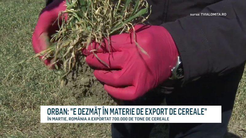 """ORBAN: """"E DEZMĂȚ ÎN MATERIE DE EXPORT DE CEREALE"""""""