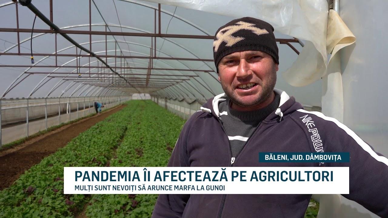 PANDEMIA ÎI AFECTEAZĂ PE AGRICULTORI
