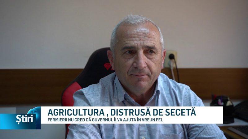 AGRICULTURA , DISTRUSĂ DE SECETĂ