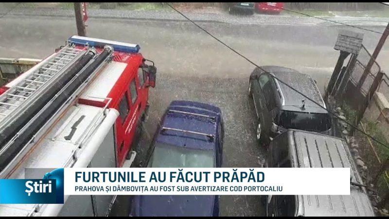 FURTUNILE AU FĂCUT PRĂPĂD